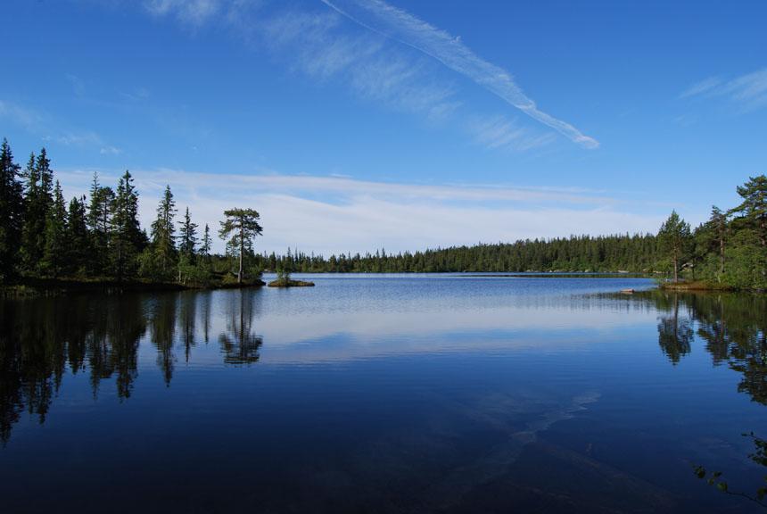 Sandtjern, Finnemarka